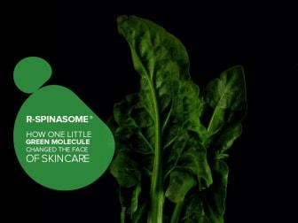 R-Spinasome®  Grean Leaf