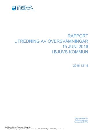 NSVAs rapport