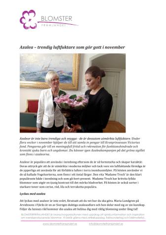 Azalea – trendig luftfuktare som gör gott i november