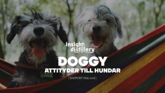 Svenskarnas attityder till hundar
