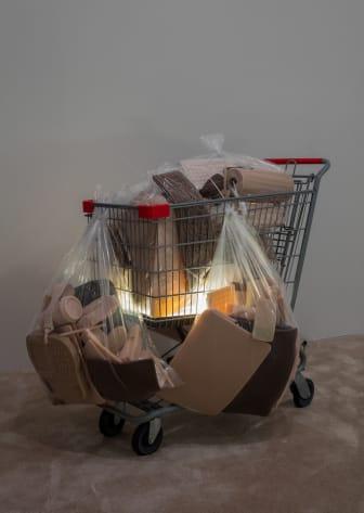 Josh Kline, Poverty Dilation, 2016- Private Passion