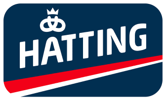 Hatting logo - Web