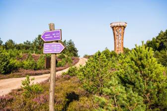 Aussichtsturm Kyritz-Ruppiner-Heide