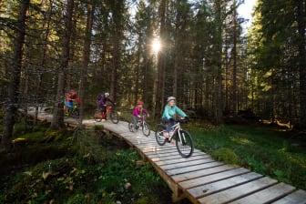 Norges nye sommerfavoritt - stisykling i Trysil