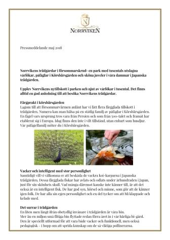 Norrvikens trädgårdar i försommarskrud- en park med tusentals utslagna vårlökar, påfåglar i Körsbärsgården och sköna juveler i våra dammar i Japanska trädgården.