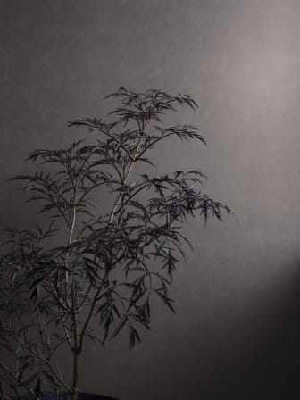 Shades_Hematite-2_Image_Roomshot_Item_5066_0007_PR