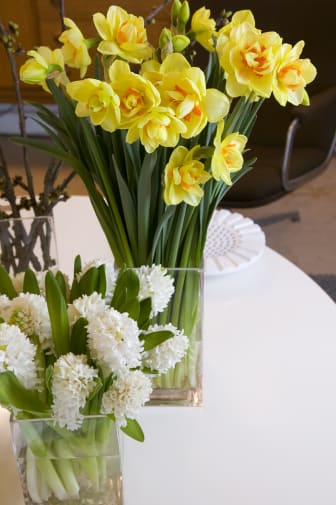 Påsk i vas med hyacinter