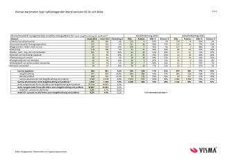 Vismas rapport över nyföretagandet bland seniorer 2013
