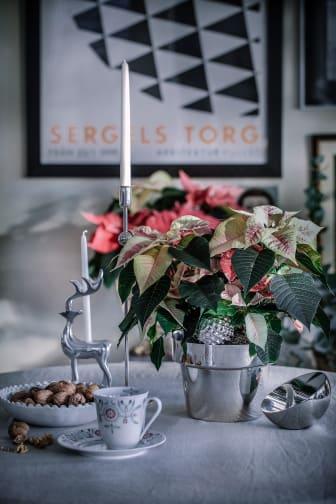 6. Julstämning med stjärnor tolkat av Åsa Myrberg, atmycasa