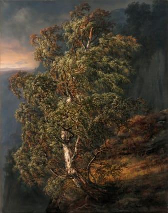 J.C. Dahl: «Bjerk i storm» (1849)