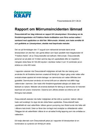 Rapport lämnad om incident i Mörrumsån