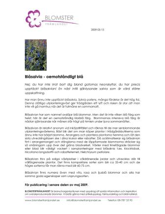 Blåsalvia - oemotståndligt blå
