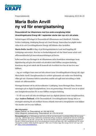 Maria Bolin Anvill ny vd för energisatsning