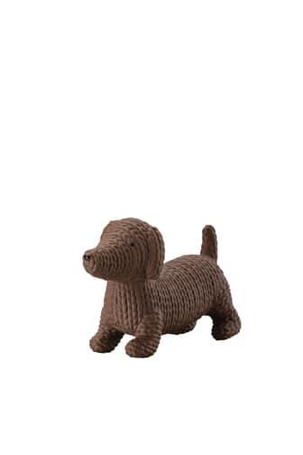 R_Pets_Hund_Alfonso_mittel