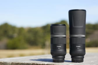 Canon RF 600mm F11 IS STM & Canon RF 800mm F11 IS STM_Ambient_002