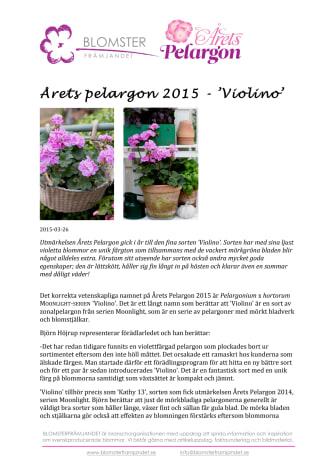 Årets pelargon 2015 - 'Violino'