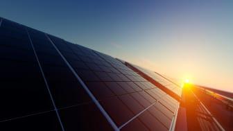 Solceller i morgonljus