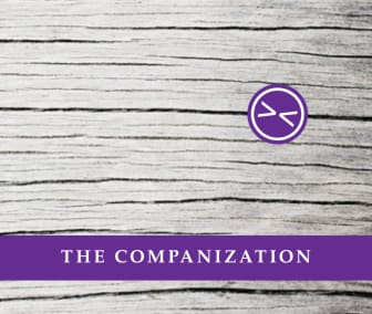 Companization - Business as usual is over!