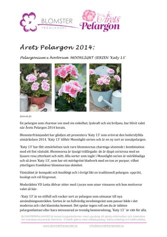 Årets Pelargon 2014 - Pelargonium x hortorum  MOONLIGHT-SERIEN 'Katy 13'