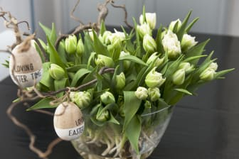 Glad påsk med svenska tulpaner!