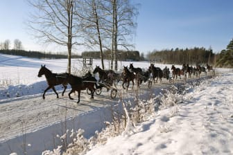 Vinterträning hos Timo Nurmos_1173