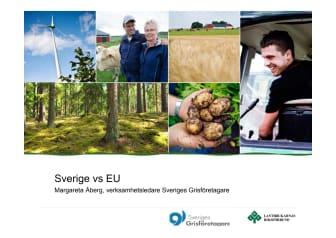 Sverige vs EU gällande grisuppfödning