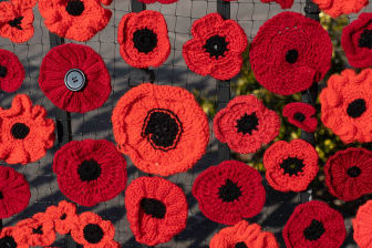 Knitted poppies.jpg
