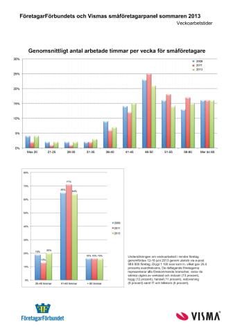 Statistik om småföretagarnas arbetstider 2013