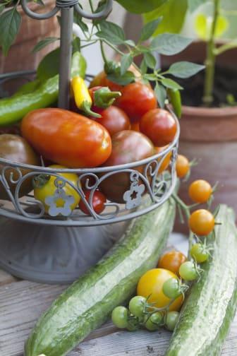 Tomat och gurka