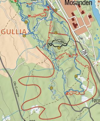 Enda flere stier i Gullia
