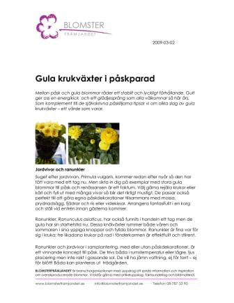 Gula krukväxter i påskparad
