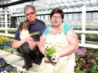 Blomsterfrämjandet på besök hos Dammstorps Handelsträdgård