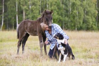 Floriane med föl och hund