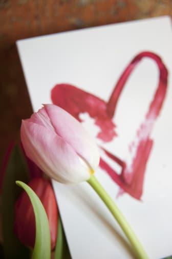 Rosa tulpan och hjärta
