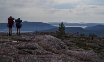 Ta Världsarvbussen till Skuleskogens nationalpark i sommar.jpg