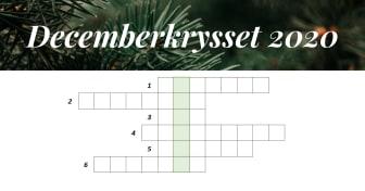 Decemberkrysset 2020 - Gällivare Näringsliv AB
