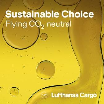 Sustainable Aviation Fuel.jpg