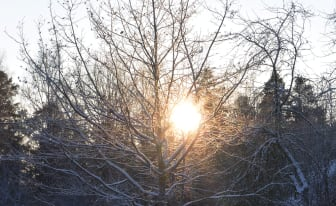 talvi_Tiina Eloranta