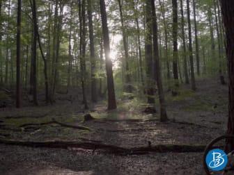 Brandenburg unplugged: Auf dem Rad durch den Herbst