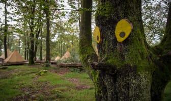 Trolljakt i djurparkens djupa skogar
