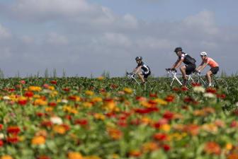 Radtour in Holland
