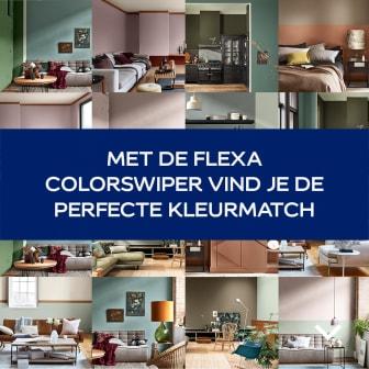 Flexa_ColorSwiper_THINK_StaticLinkAd
