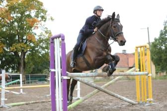 Stockholm Intrnational Horse Show - Tobias Karlsson