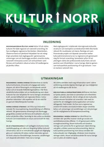 Kulturpolitisk position Kultur i Norr