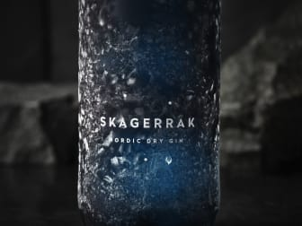 Skagerrak_ndg_freeze[1].jpg