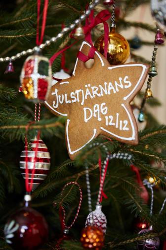 Julstjärnor tolkade av Karl Fredrik från Eklaholm