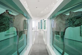 Damien Hirst (c) Astrup Fearnley Collection(2)