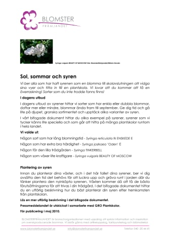 Sol, sommar och syren