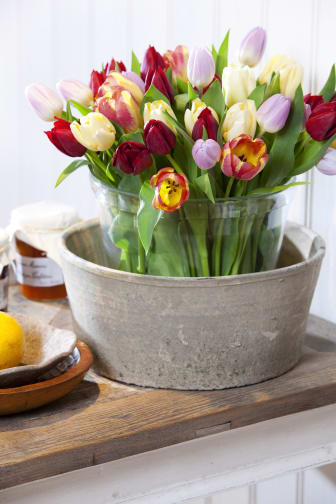 Tulpaner i dubbla vaser