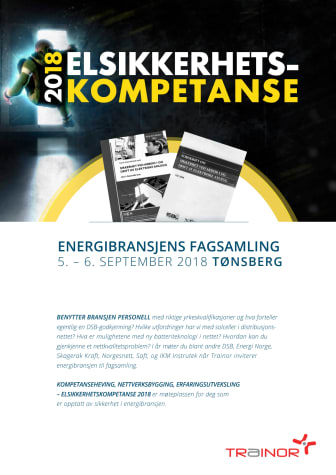 Elsikkerhetskompetanse 2018, program